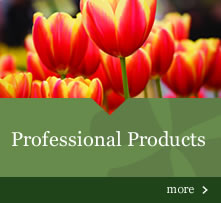 Professional Products