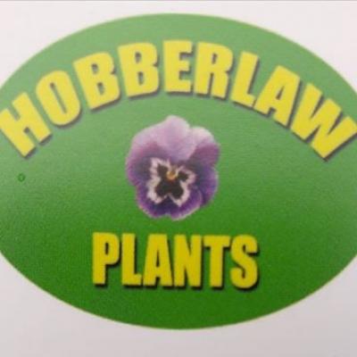 HOBBERLAW PLANTS