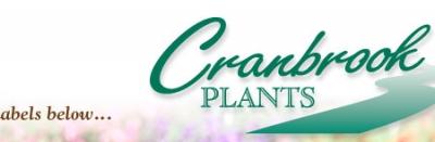 CRANBROOK PLANTS