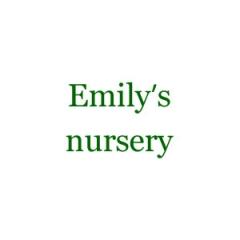 EMILYS NURSERY