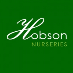 Hobsons nursery Sheffield