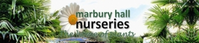 MARBURY HALL NURSERIES