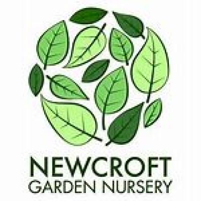 NEWCROFT NURSERY