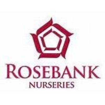 ROSE BANK NURSERIES