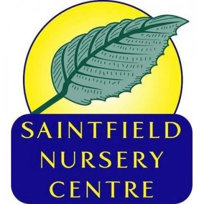 SAINTFIELD NURSERY & GARDEN CENTRE