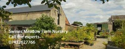 SWINESMEADOW FARM GARDEN NURSERY