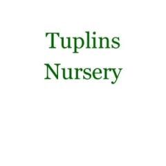 Tuplins Nursery
